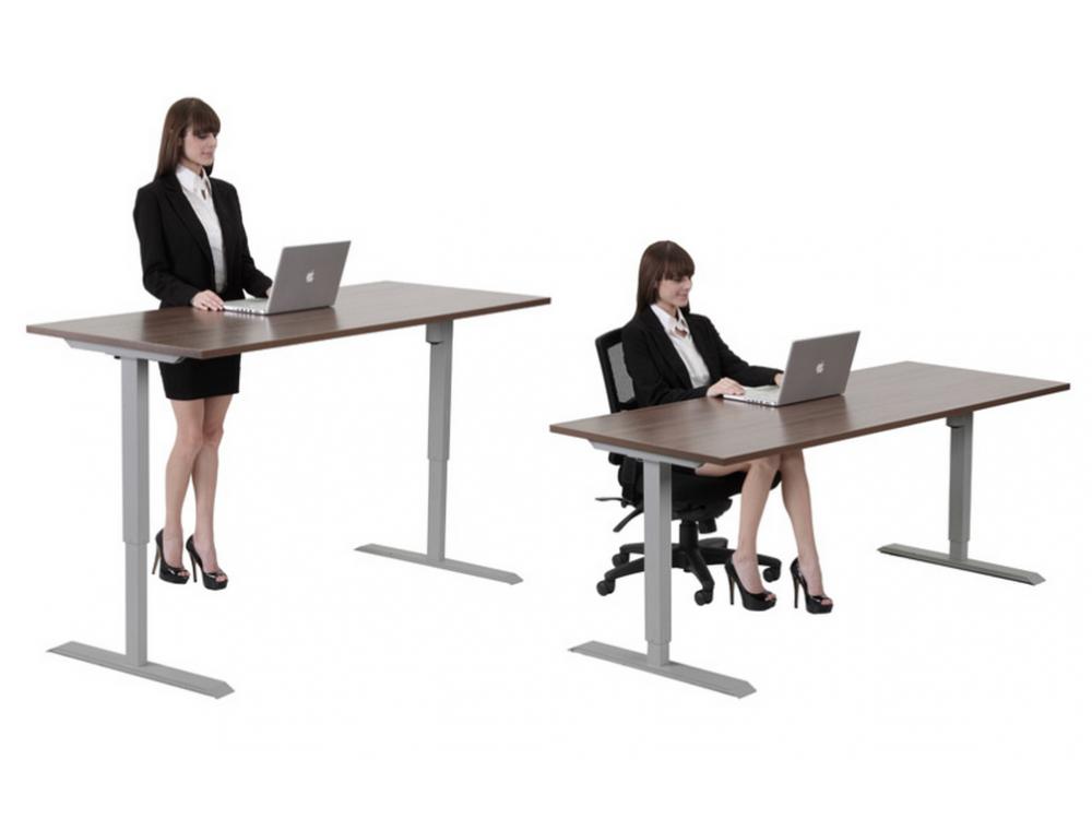 Standing Desk Adjule Height 30 X60